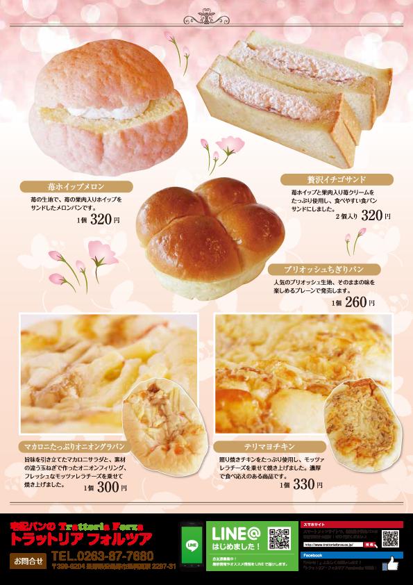 3月新商品チラシ-裏.png