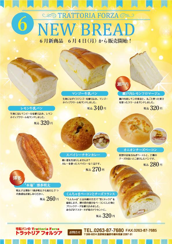6月新商品チラシ-表.png